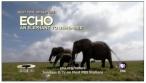 echo_pic_2