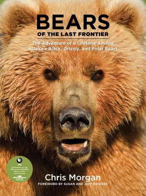 Bears_of_the_last_frontier